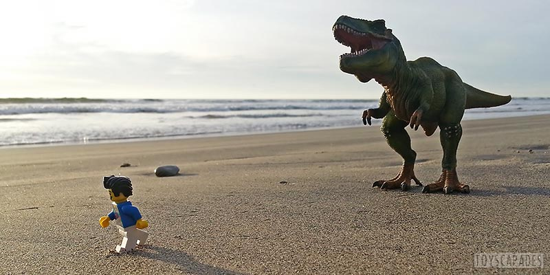 bill-dollar-loves-life-even-when-life-involves-being-chased-down-the-beach-by-a-trex-3